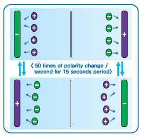Umpolungs Automatik Elektroden Wasserionisierer Flussumkehr