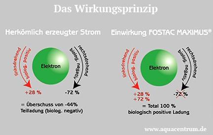 fostac-maximus-p40-steckdose_3_aquacentrum
