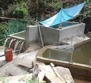 Envirolyte Anwendung ECA Wasser Anolyt Katolyt Trinkwasseraufbereitung Drittländern