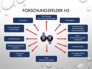 22-Forschungsfelder H2