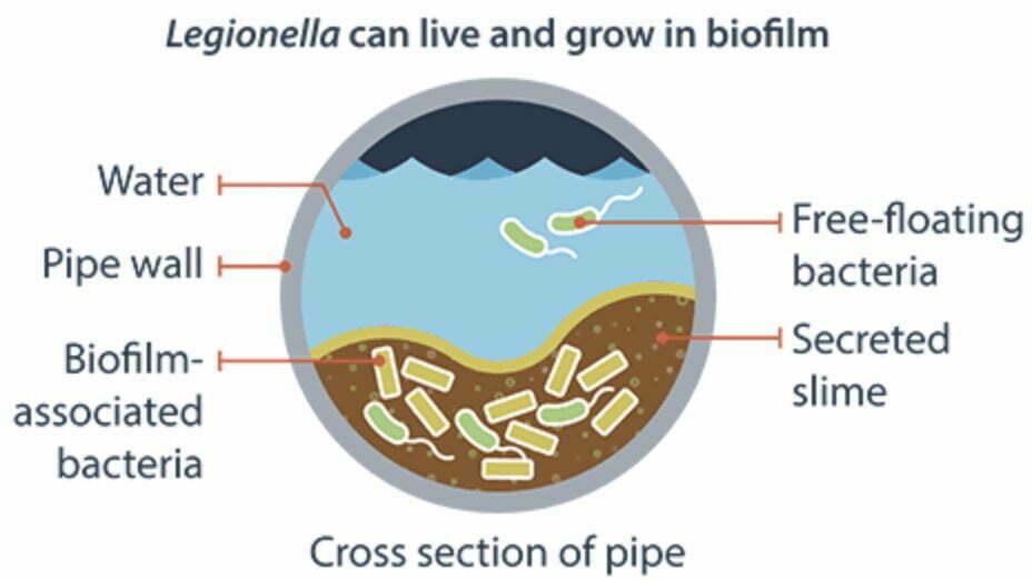 Envirolyte Anwendung ECA Wasser Anolyt Katolyt Industrie Legionellen