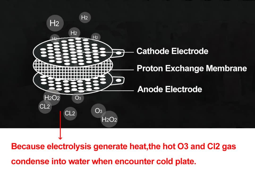Schema PEM Elektrolyse Anode Protenen Austausch Membrane Kathode