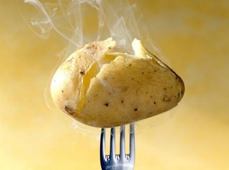 Kartoffel - Wasserstoff-Wasser in der Landwirtschaft