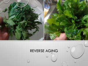 45-Reverse aging
